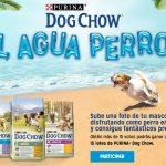 """Participa en el concurso """"Al Agua Perros"""" y consigue fantásticos premios"""