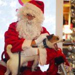 Ya he entregado mi carta a Santa Claus!!!