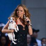 Mariah Carey y sus Jack Russell